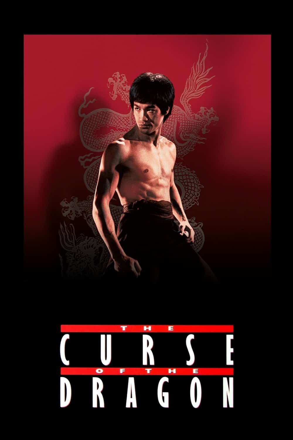 Bruce Lee: The Curse of the Dragon, 1993