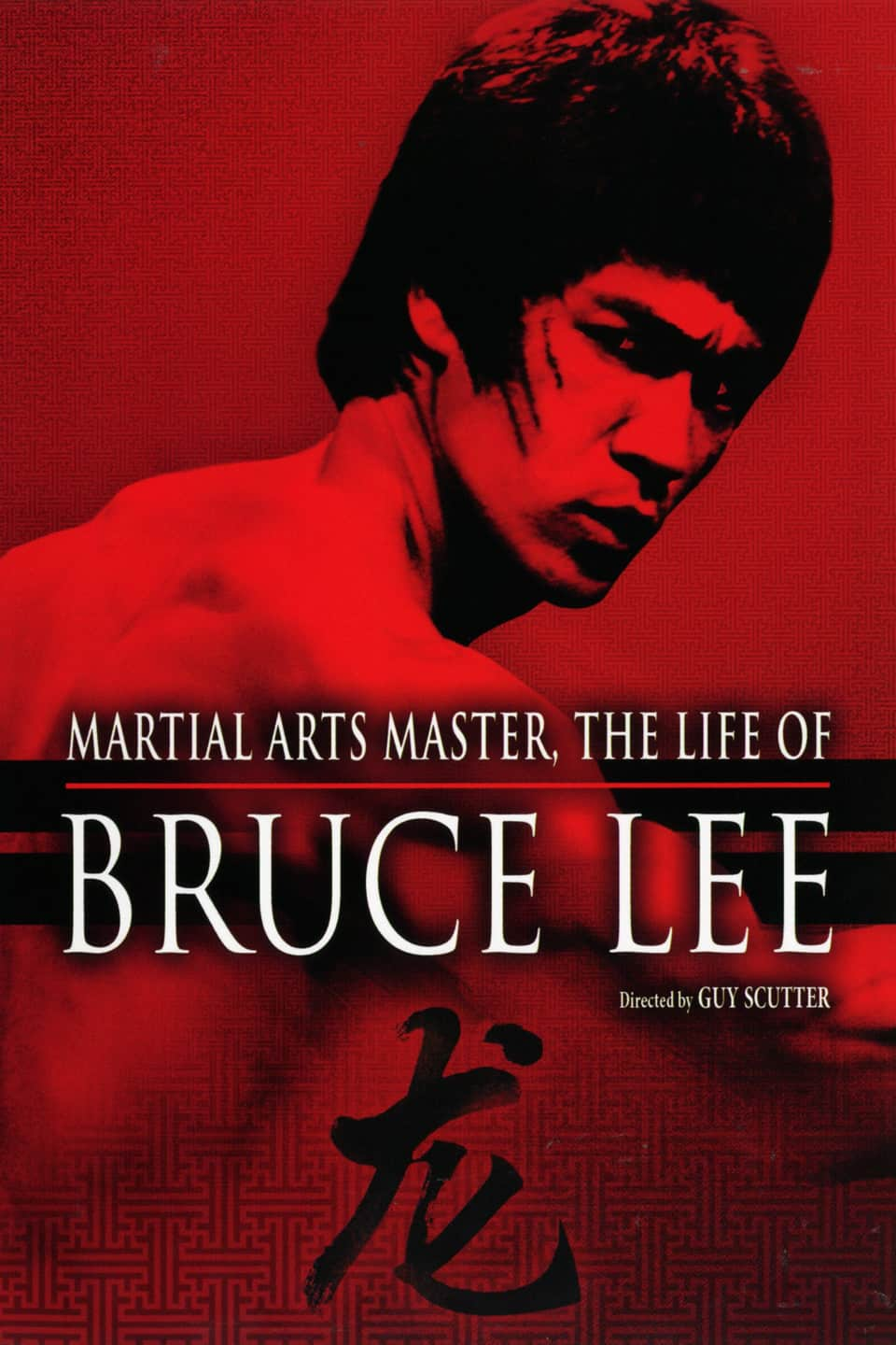 Martial Arts Master: The Life of Bruce Lee, 1994