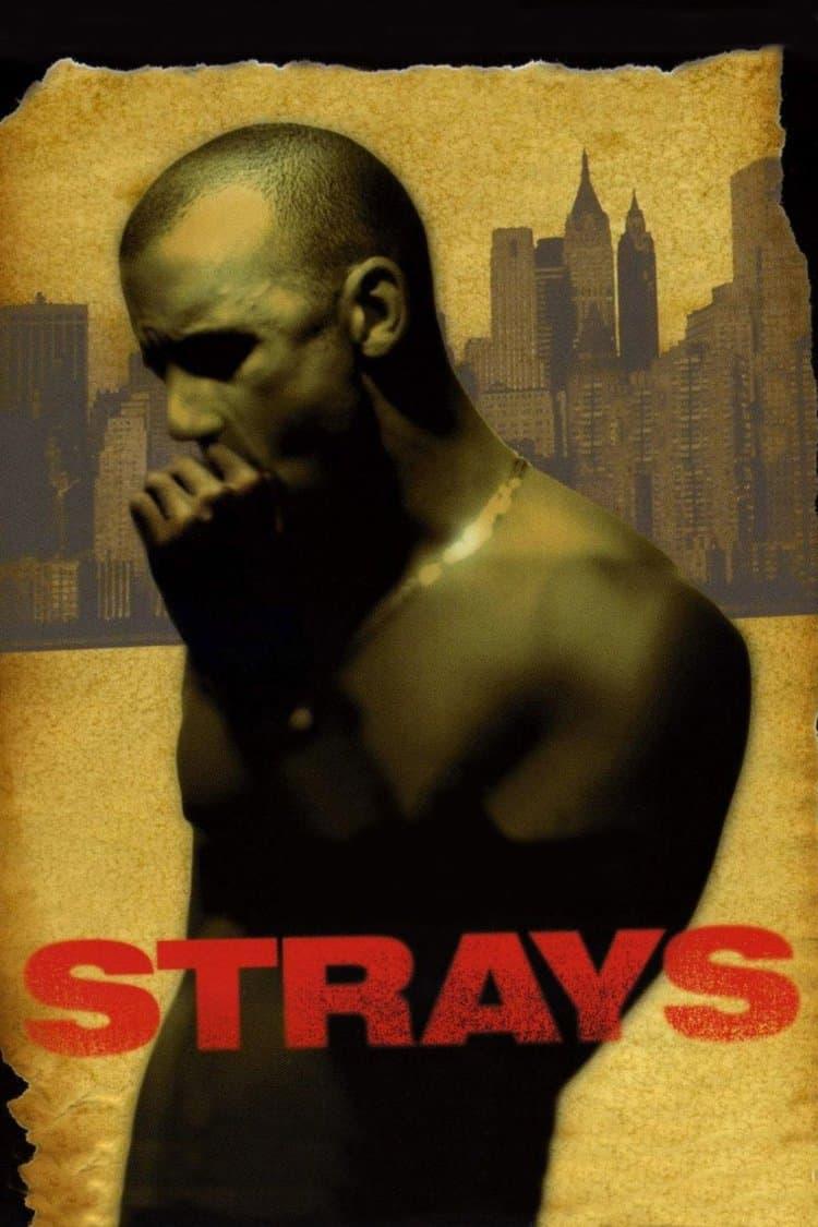Strays, 1997