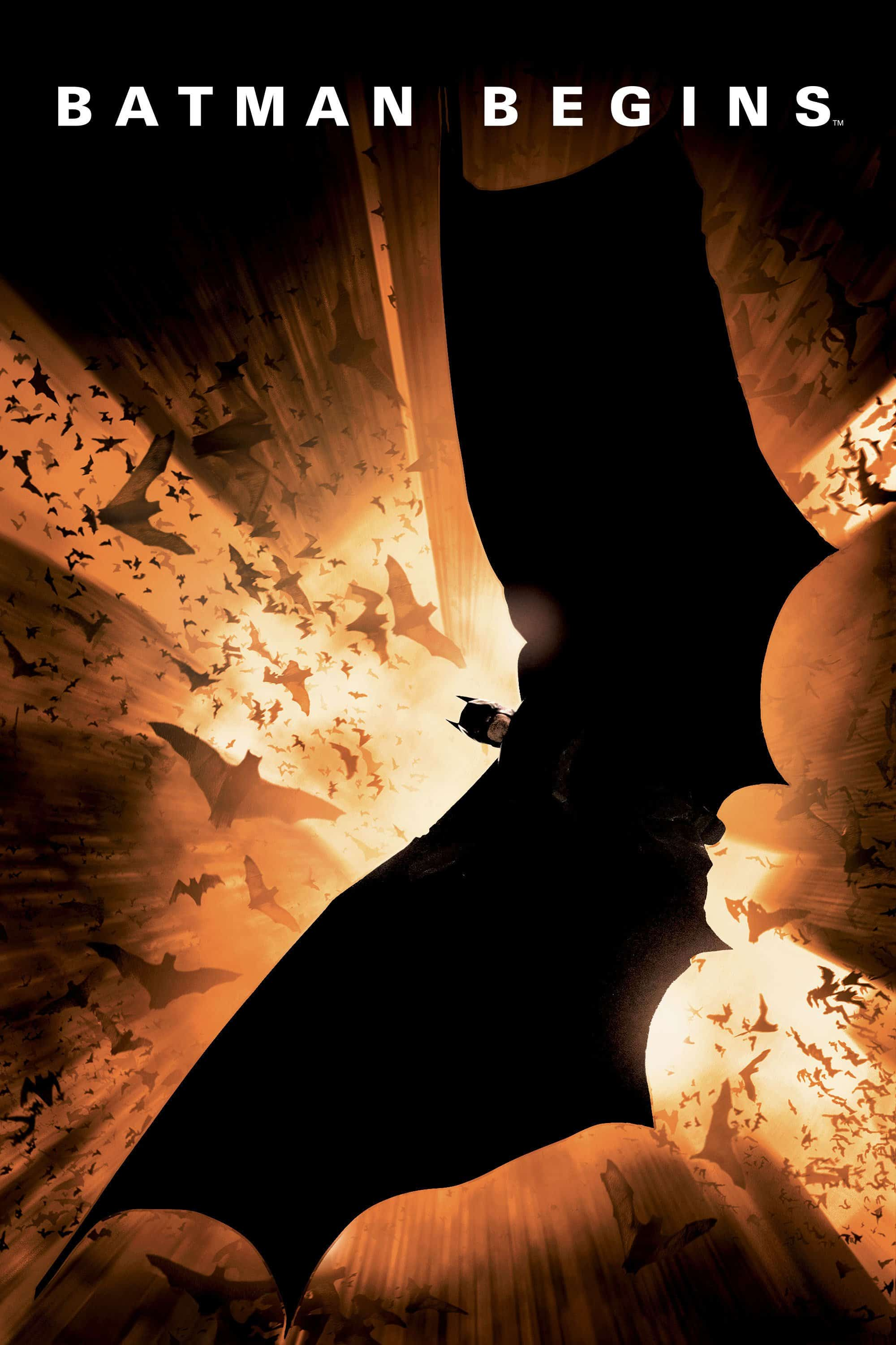 Batman Begins, 2005