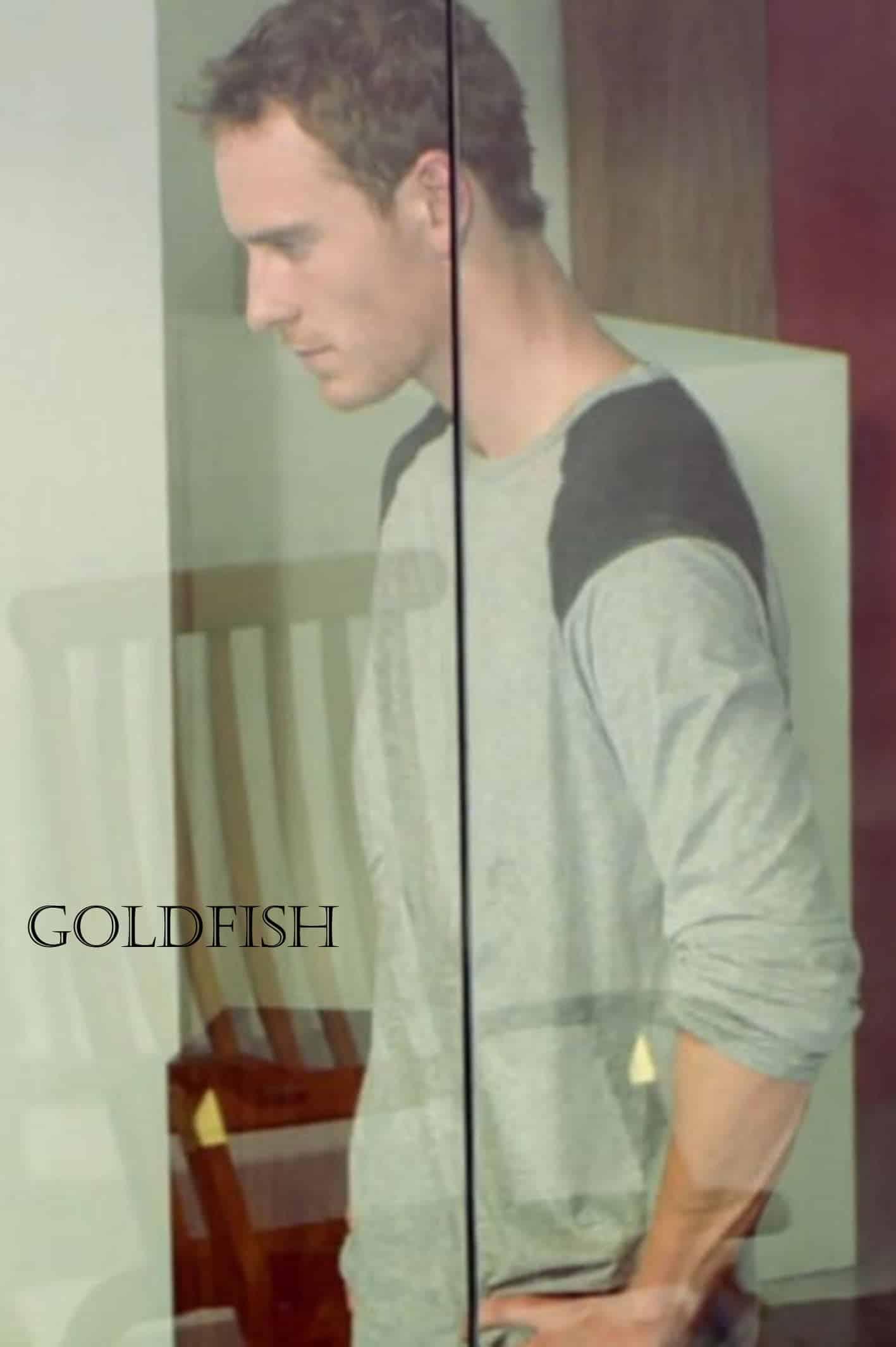 Goldfish, 2007