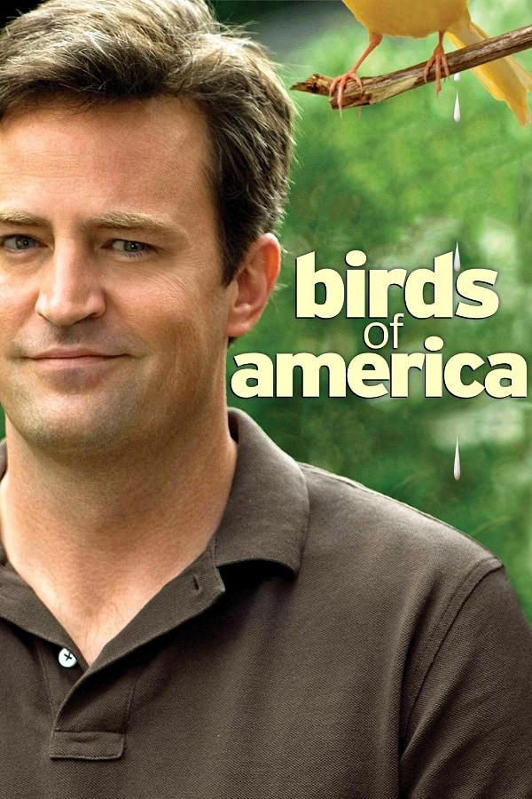 Birds of America, 2008