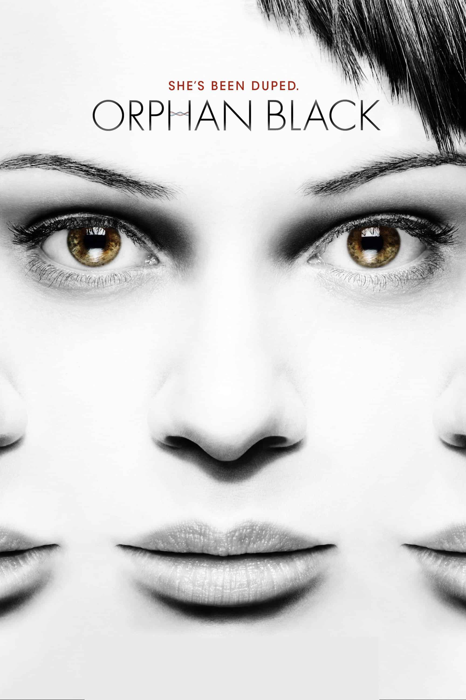 Orphan Black, 2013