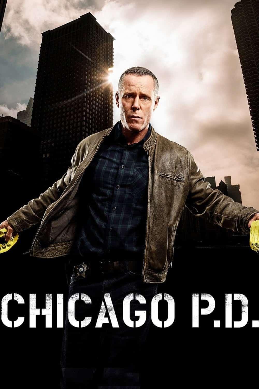 Chicago P.D., 2014