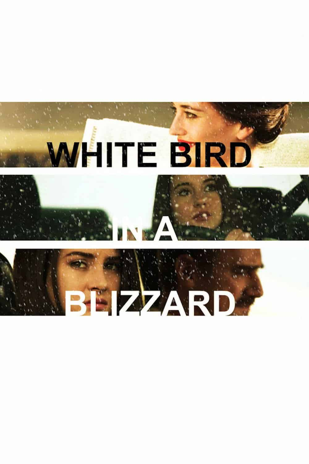 White Bird in a Blizzard, 2014