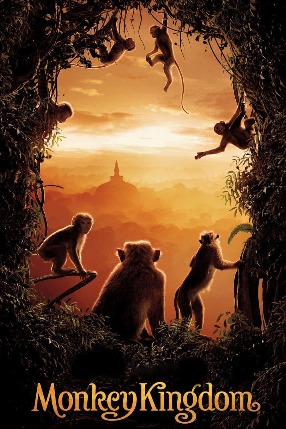 Monkey Kingdom, 2015