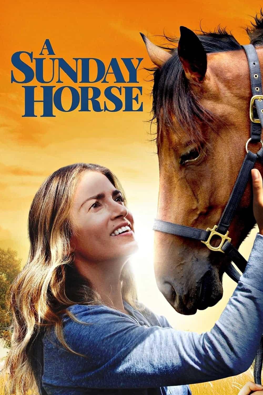 A Sunday Horse, 2016
