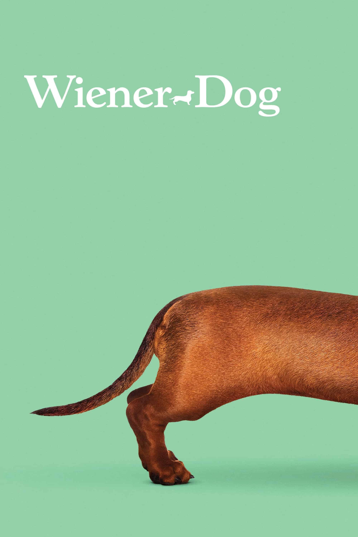 Wiener-Dog, 2016