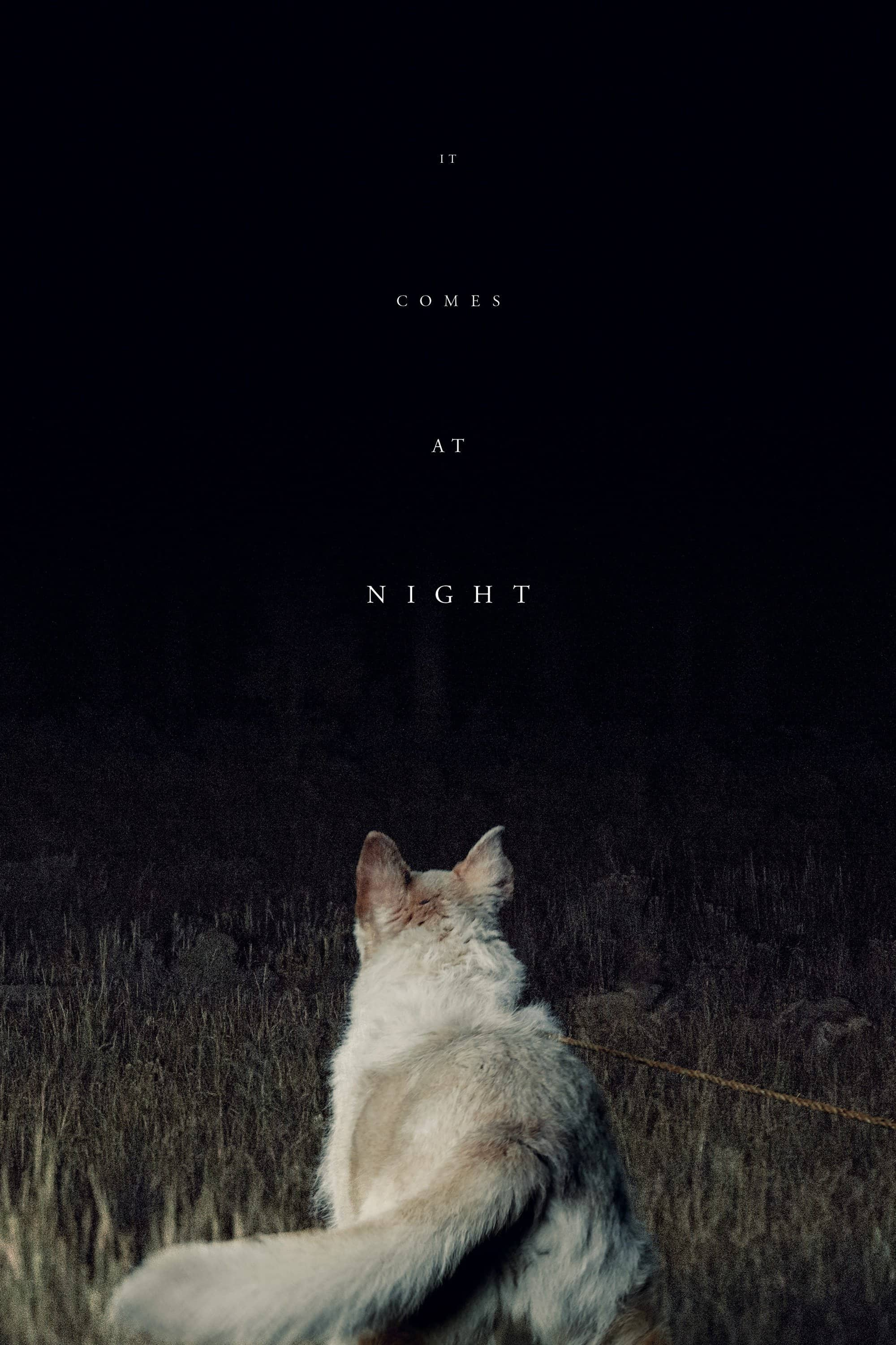 It Comes at Night, 2017