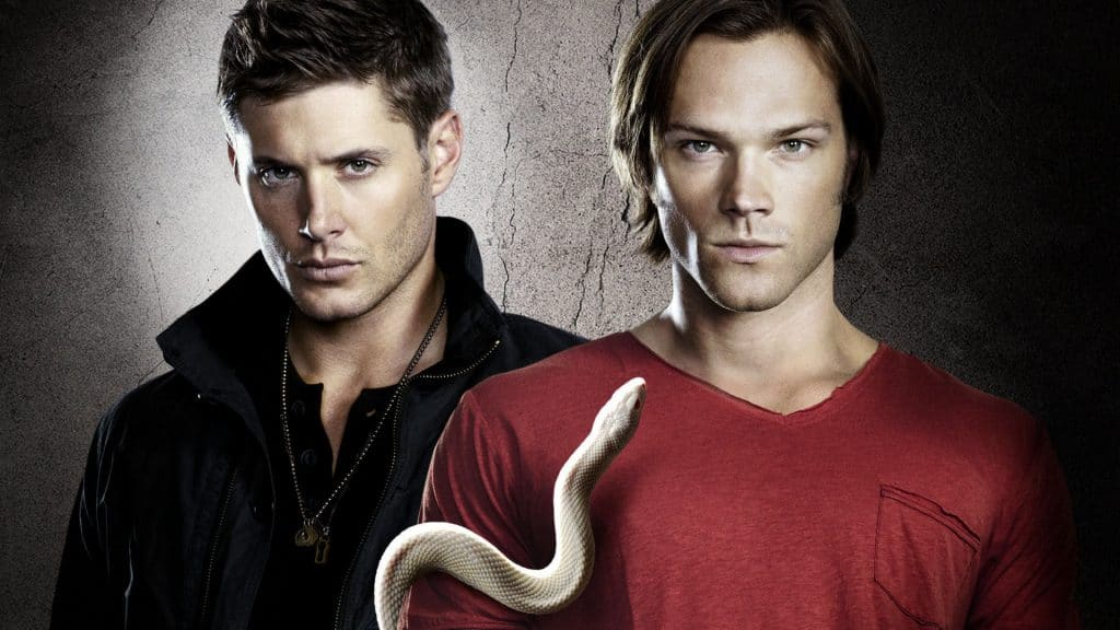 Hottest Casts in TV Shows